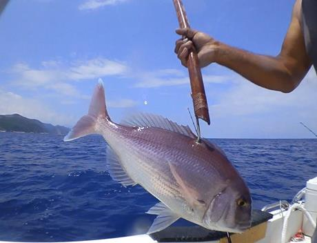 fishing trips around Mykonos